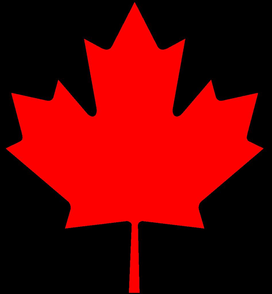 CANADA'S PREMIUM IPTV SERVICE | PREMIUM SILVER IPTV PACKAGE SUBSCRIPTION